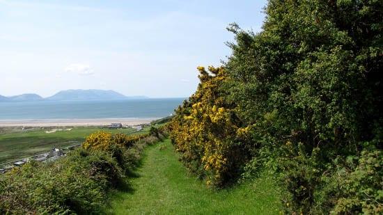 """Views of the Iveragh Peninsula"""