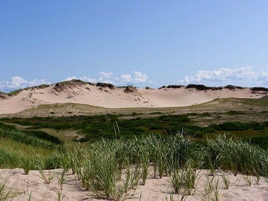 """""""Parabolic dunes"""""""