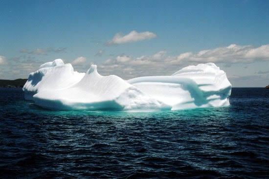 """A Newfie iceberg"""