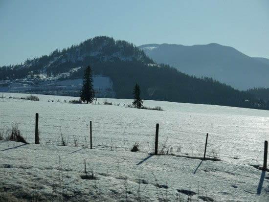 """""""Sparkling fields near Salmon Arm"""""""