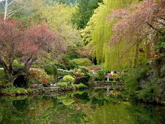"""Ponds in the Sunken Garden"""