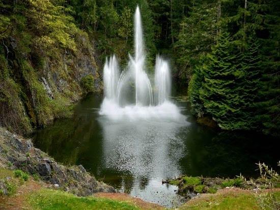 """Ross Fountain"""