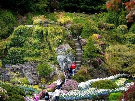 Limestone Hill In The Sunken Garden