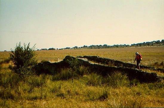 """The camino near Caceres"""