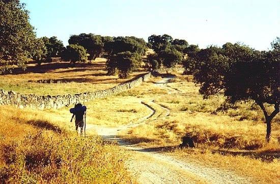 """Camino around Alcuéscar"""