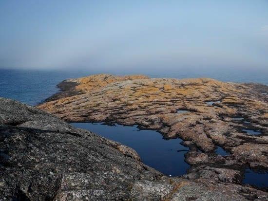 """The rocks and lichen of Davieaux Island"""