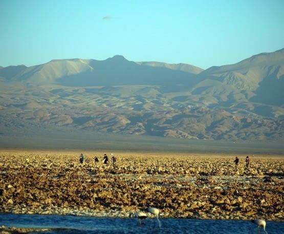 """Salt flats in the Atacama Desert"""