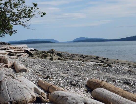 """Our log strewn beach on Valdes Island"""