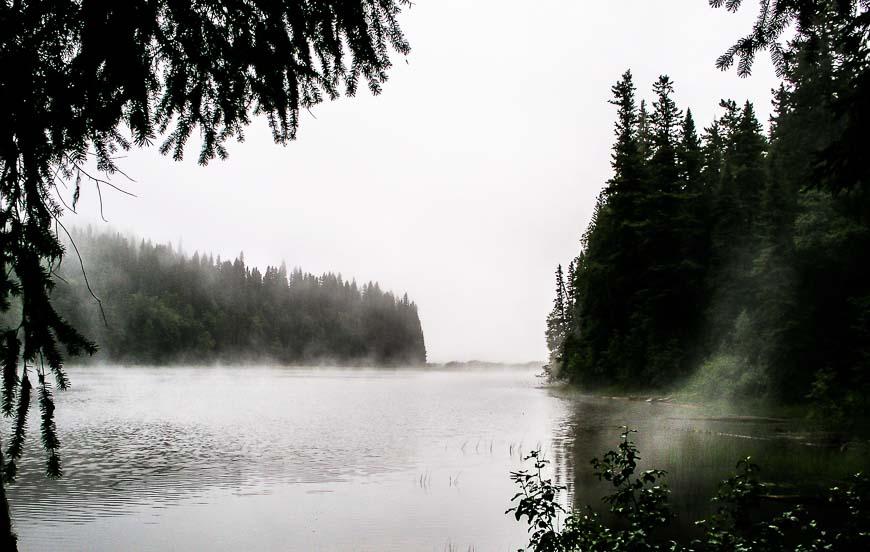 Waking to fog