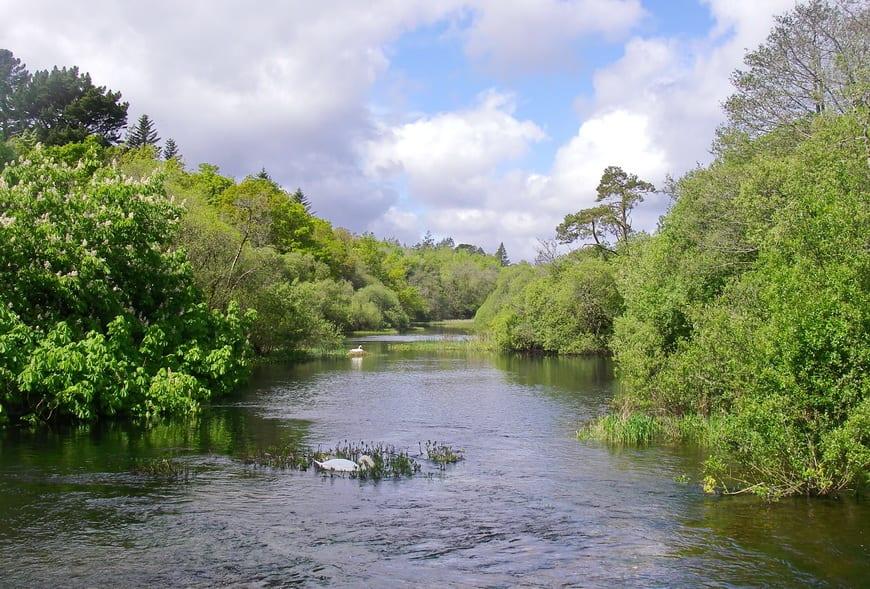 Beautiful river that runs through Cong in Connemara