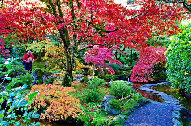 25 must do activities on vancouver island - Best time to visit butchart gardens ...