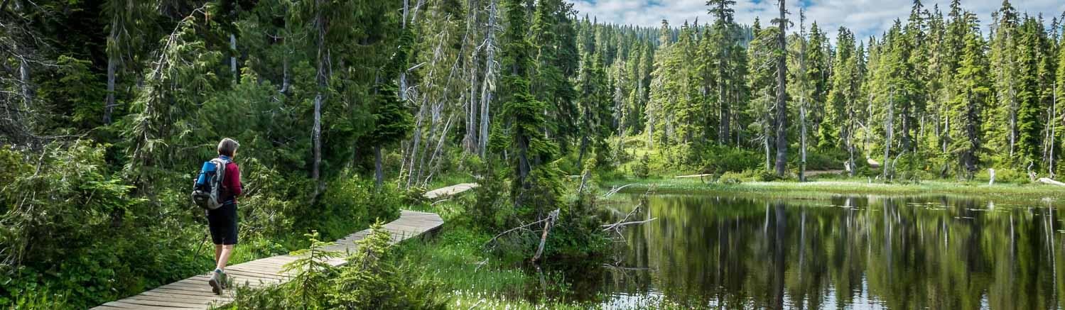 Vancouver Island Hikes: The Kwai Lake Loop
