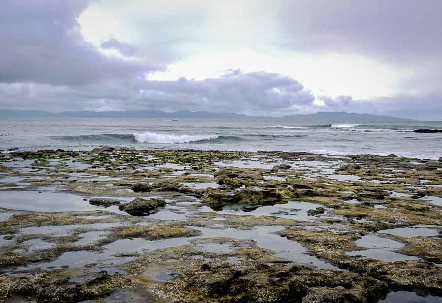 Tide pools visible at low tide at Botanical Beach