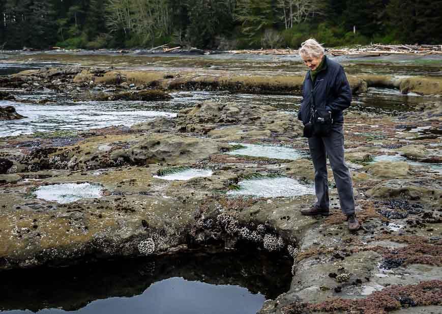 Peering into a deep tide pool
