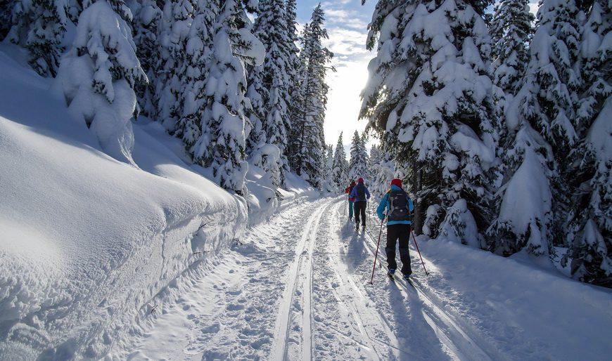Peter Lougheed cross country skiing