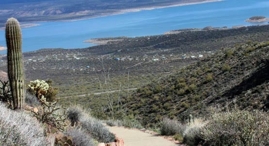 """View of Theodore Roosevelt Lake from Tonto National Monument"""