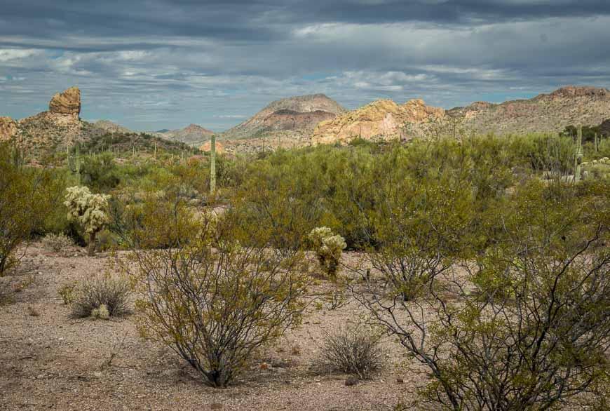 Scenery near Tortilla Flats
