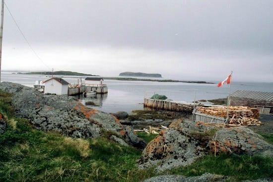 """A pretty Newfoundland coastal scene"""