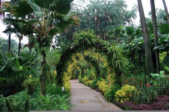 """The Botanical Gardens"""