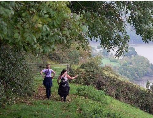 """Coastal walking at Dittisham on the Dart Valley Trail"""