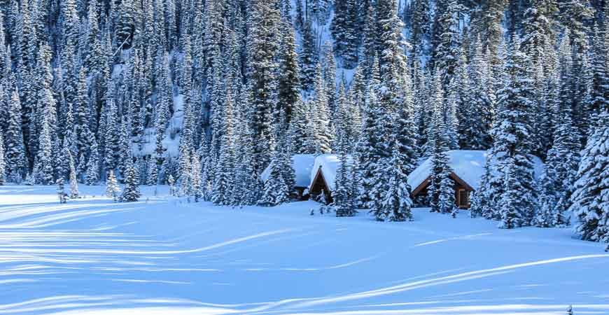 Lake OHara's lakeside cabins in a pristine mountain setting