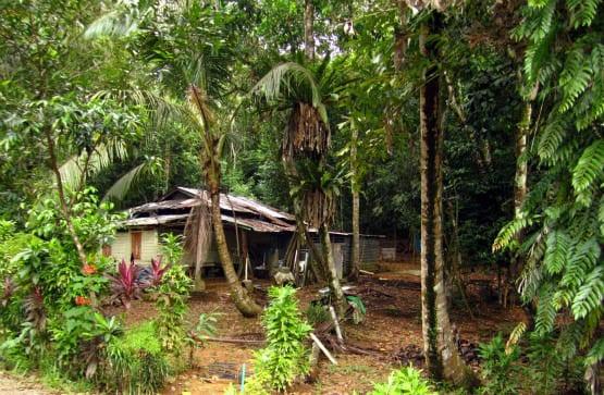 """""""Home in Pulau Ubin"""""""