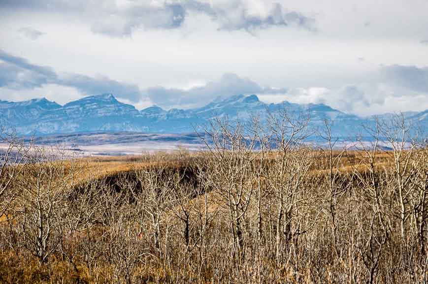 Great Rocky Mountain views no matter what the season