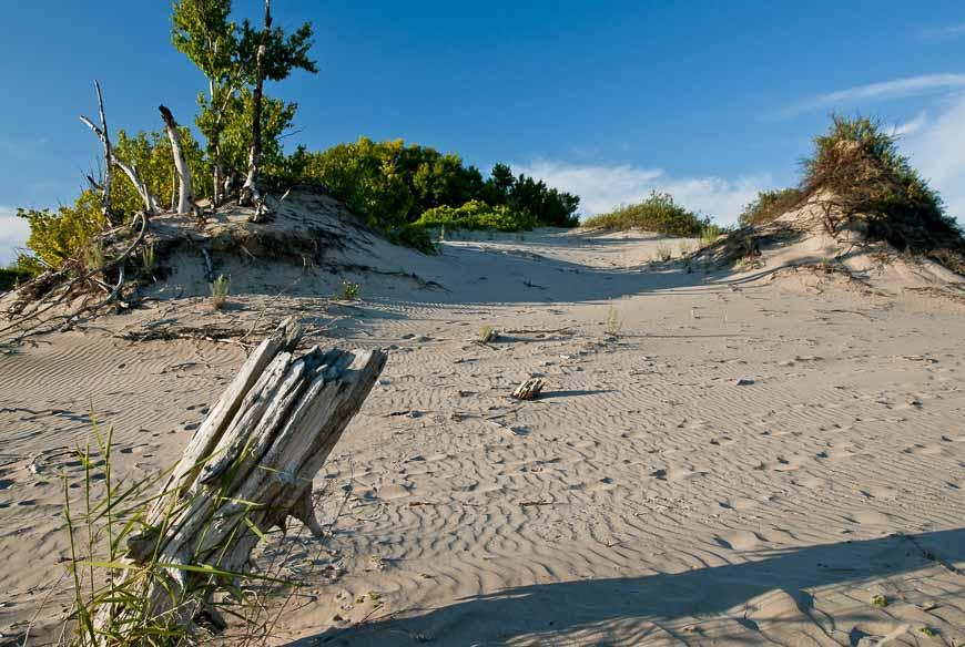 Beautiful Beaches In Prince Edward County