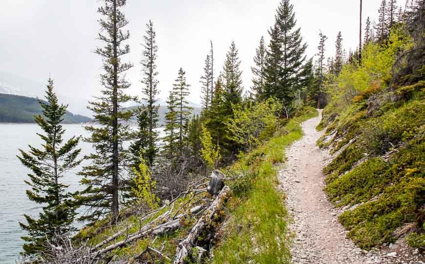 Some nice views from the Lake Minnewanka Lakeside Trail