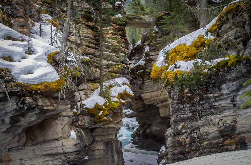 The Athabasca River pours through Athabasca Canyon once the snow melts