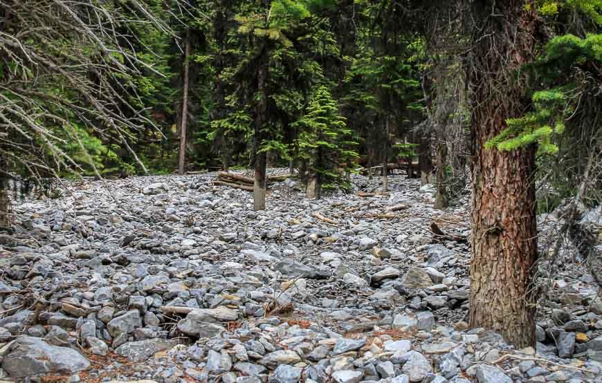 Remnants of a huge debris flow