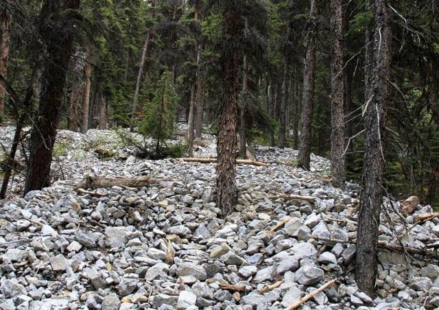 """Remnants of a huge debris flow"""