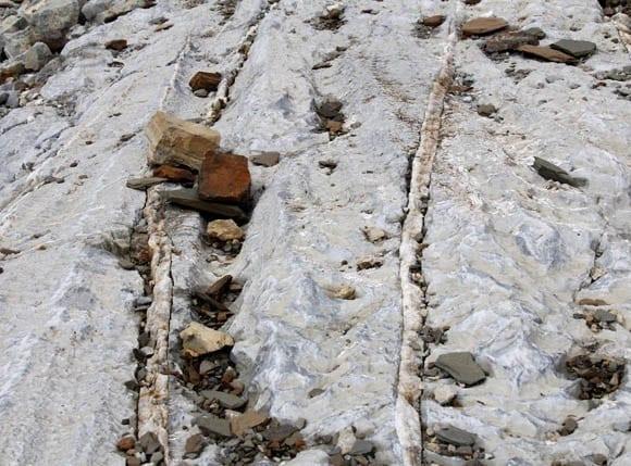 """""""Glacier scarred rock"""""""