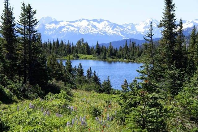 """Alpine lake and mountain views"""