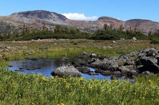 Rainbow Range 055 A World class Hike:The Rainbow Range in Tweedsmuir Provincial Park