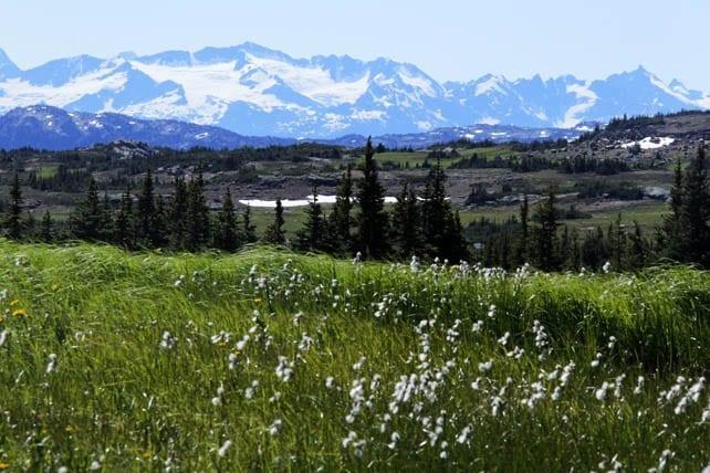 Rainbow Range 107 A World class Hike:The Rainbow Range in Tweedsmuir Provincial Park