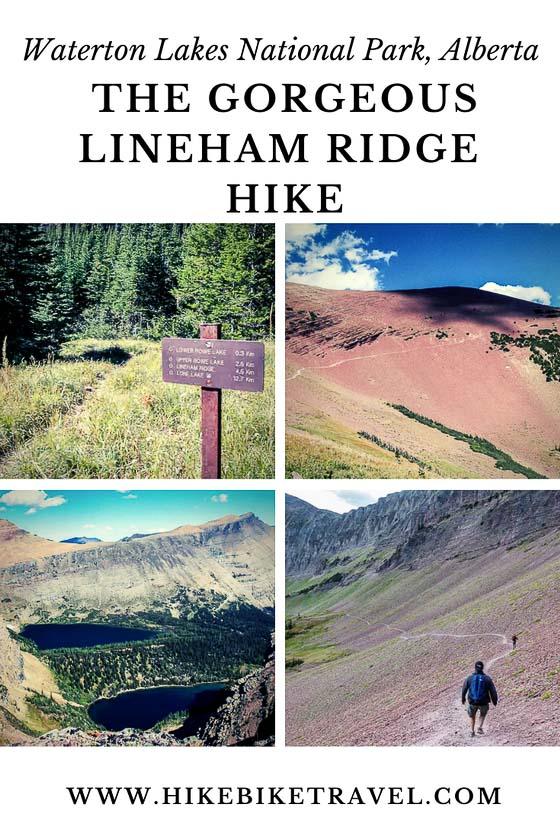 The gorgeous Lineham Ridge hike, Waterton Lakes National Park
