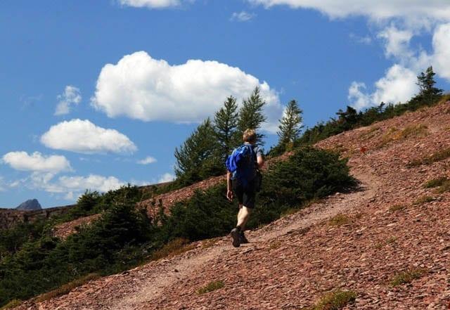 """Near the top of Lineham Ridge"""