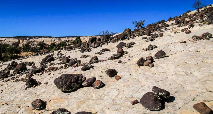Black, volcanic boulders strewn over the sandstone