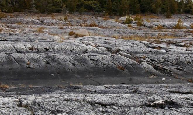 """""""Rocks that look like waves"""""""