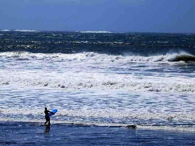 """""""Surfer"""""""