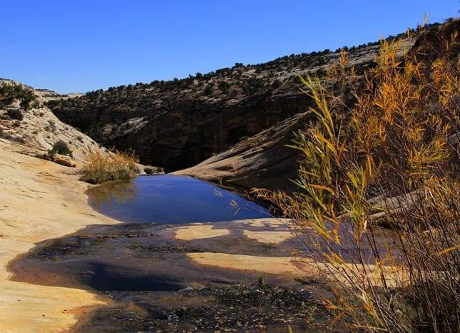 """""""The infinity pool at Upper Calf Creek Falls"""""""