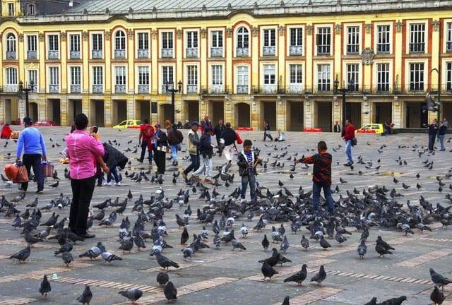 "On a Bogota bike tour you see pigeons galore at the Plaza de Bolivar"""