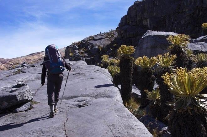 """Rodrigo hiking along slabs of solid rock"""