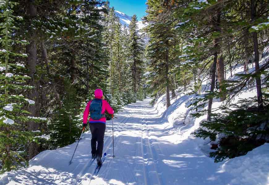 It's a fun, beautiful ski back to the trailhead from Skogan Pass