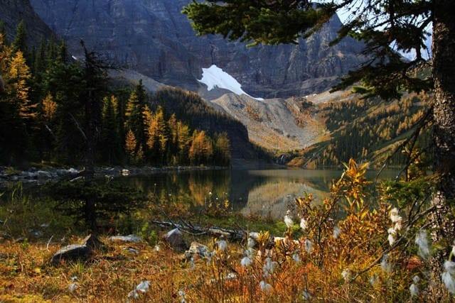 """Taylor Lake in Banff National Park """