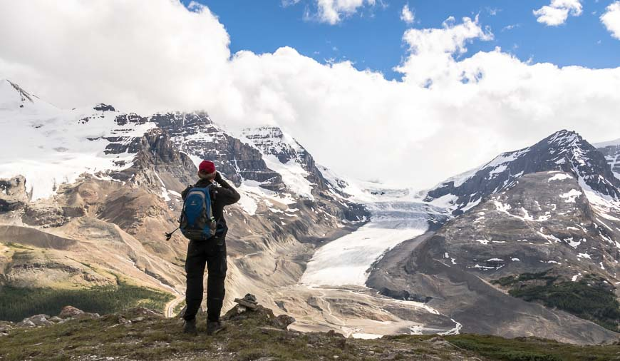 The Columbia Icefields On The Wilcox Pass Hike
