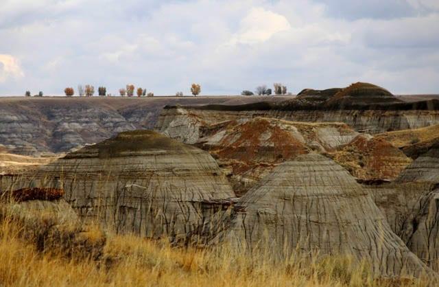 """The Badlands of Dinosaur Provincial Park"""