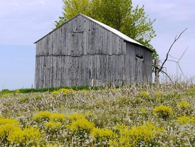 """Old barn on Wolfe Island"""