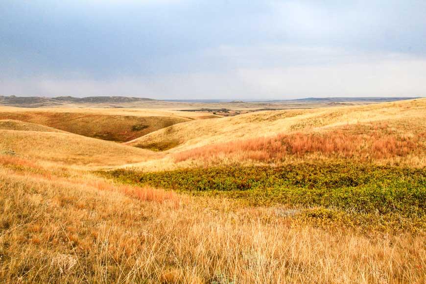 Big vistas, quiet spaces in Grasslands